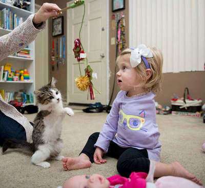 The girl without hands and trehlapy kitten found each other