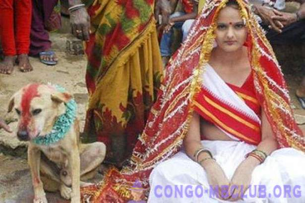 Indian girl was married to a dog