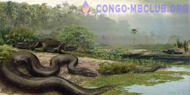 Titanoboa: the biggest snake among existing