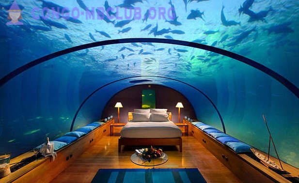 Restaurant and sleeping under water