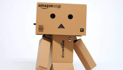 Amazon home robot the size of a child. What about him?