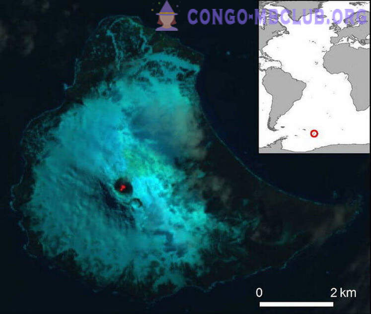 Next to Antarctica discovered a very rare type of volcano. What are its characteristics?