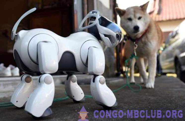 Sony will release an updated version of the legendary robot Aibo