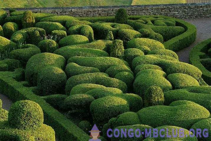 The most amazing gardens of the world