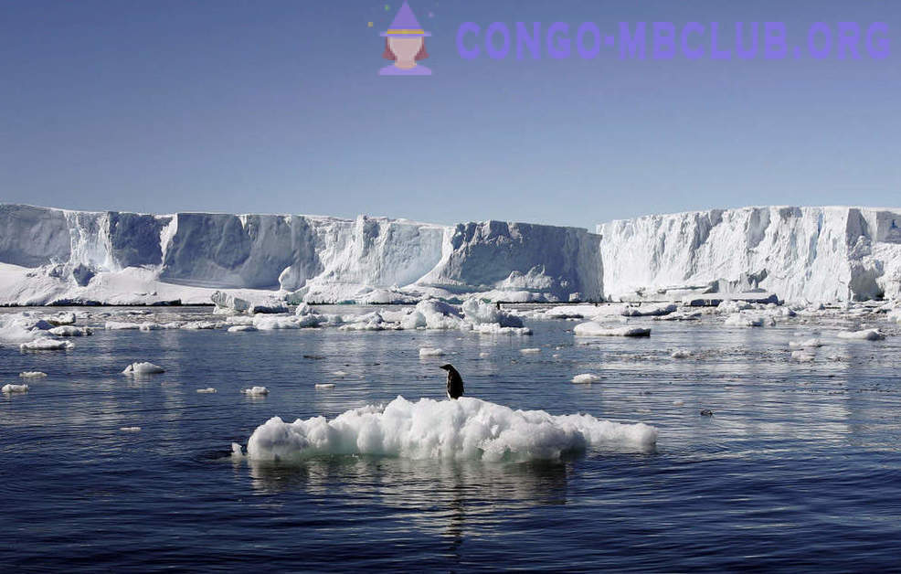The world's largest marine reserve in Antarctica