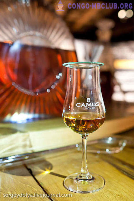 Everything you wanted to know about Cognac, but were afraid to ask